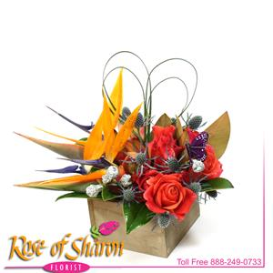 Image of 2492 Lovers in Paradise from Rose of Sharon Florist