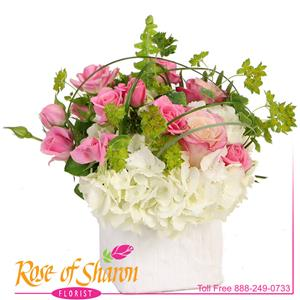 Maternity Flowers from Rose of Sharon Florist