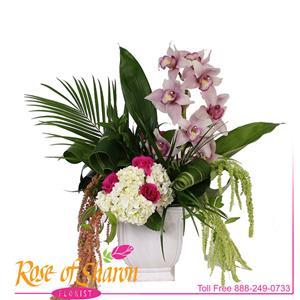 Callia Bouquet