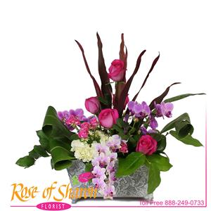 Luxurious Expressions from Rose of Sharon Florist