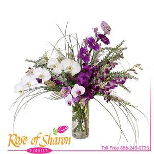Leilani Orchid Arrangement