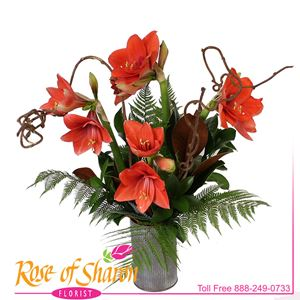 Early Autumn from Rose of Sharon Florist