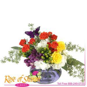 Pax Bouquet